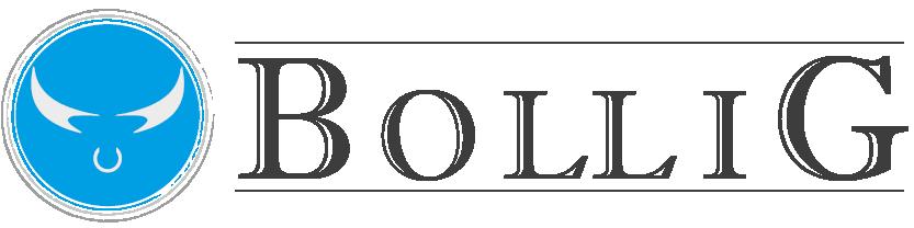 Weingut Bollig-Logo